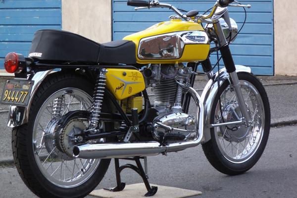 tiger600